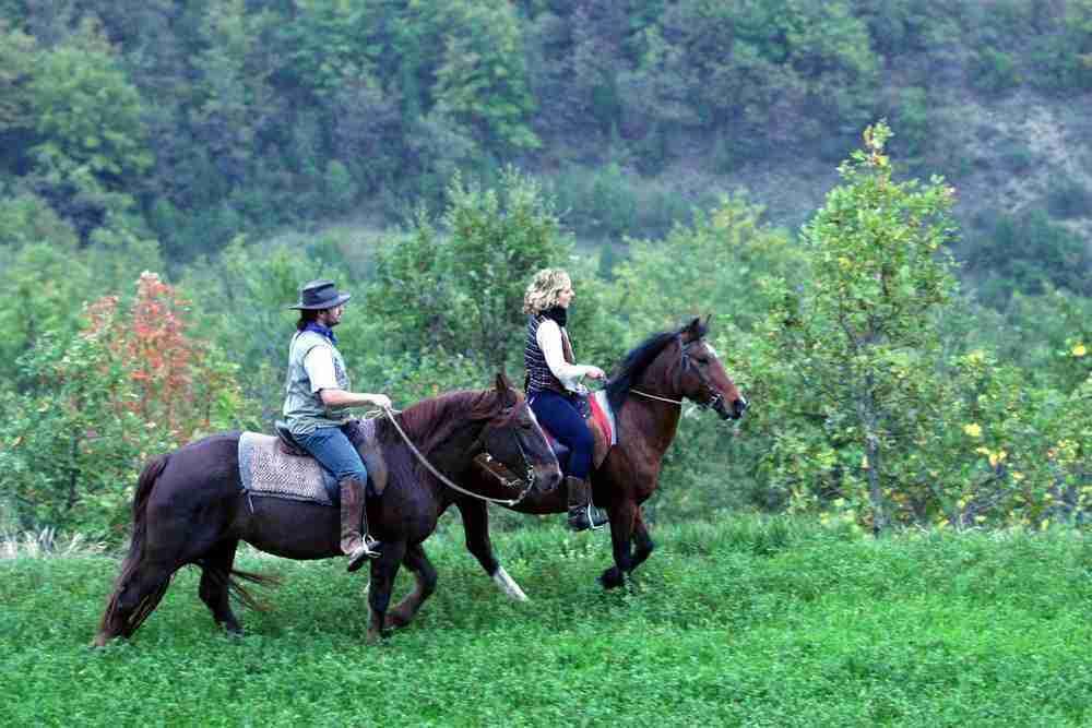 Activiteit-paardrijden-vanuit-eigen-manege-1